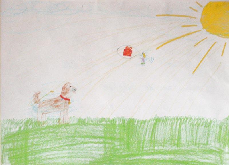 bild-zeichnung-hund